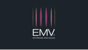 EMV Extreme mix voice